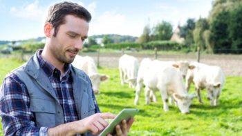 Подведены итоги конкурсного отбора проектов КФХ для предоставления грантов по программе «Поддержка начинающих фермеров»