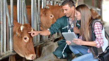Минсельхозпрод РТ объявляет дополнительный конкурс на получение грантов по программе развития семейных животноводческих ферм на базе КФХ